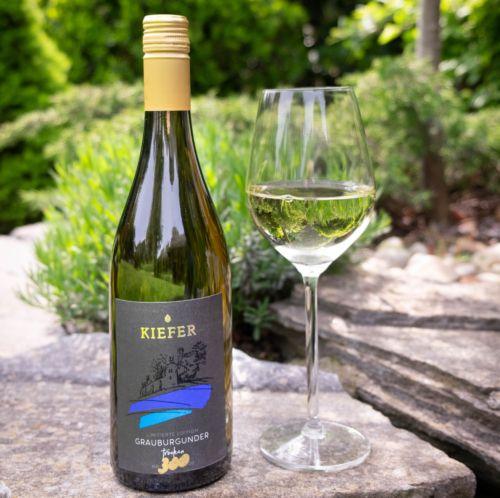 2020-09-06-Weingut-Kiefer-Ortenberg-Wein-Erlesen-kaufen-Wein-Jahrgang- 2018 - Grauburgunder - Spätlese-trocken